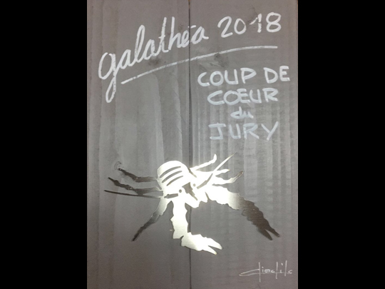 <em>Les secrets de l&rsquo;ange</em> se font une petite place dans le cœur du Jury du Festival Galathea à Hyères