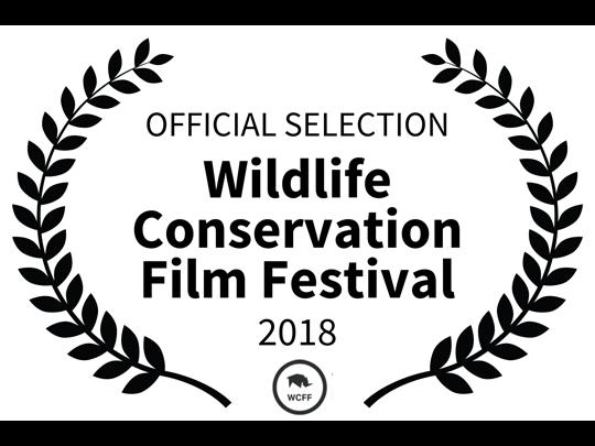 <em>The Angel's Secrets</em> ha sido oficialmente seleccionado para el Wildlife Conservation Film Festival en Nueva York