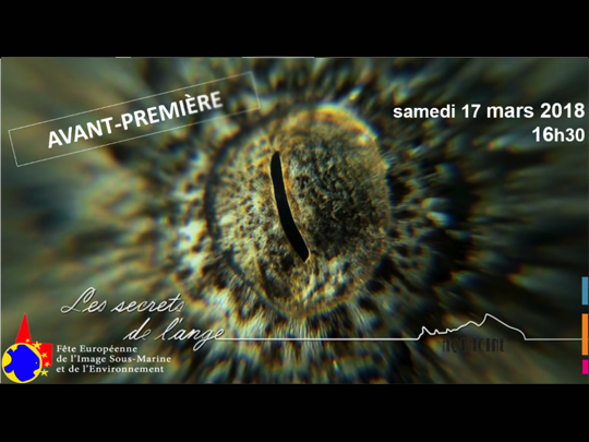 <em>Les secrets de l'ange</em> as a Premiere in France at the European Underwater and Environmental Image Festival