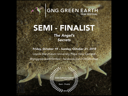 <em>The Angel's Secrets</em>, Semi-Finalist at the GNG Green Earth Film Festival in Los Angeles