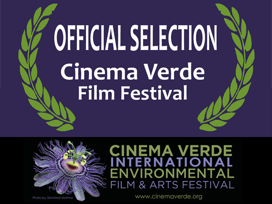 Official Selection for <em>The Angel's Secrets</em> at the Cinema Verde International Environmental Film & Arts Festival
