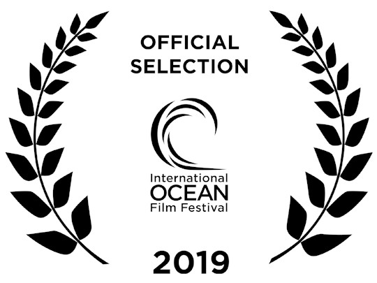 Official Selection for <em>The Angel's Secrets</em> at the International Ocean Film Festival in San Francisco