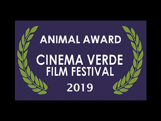 "<em>The Angel's Secrets</em> wins the ""Animal Award"" at the Cinema Verde Festival"